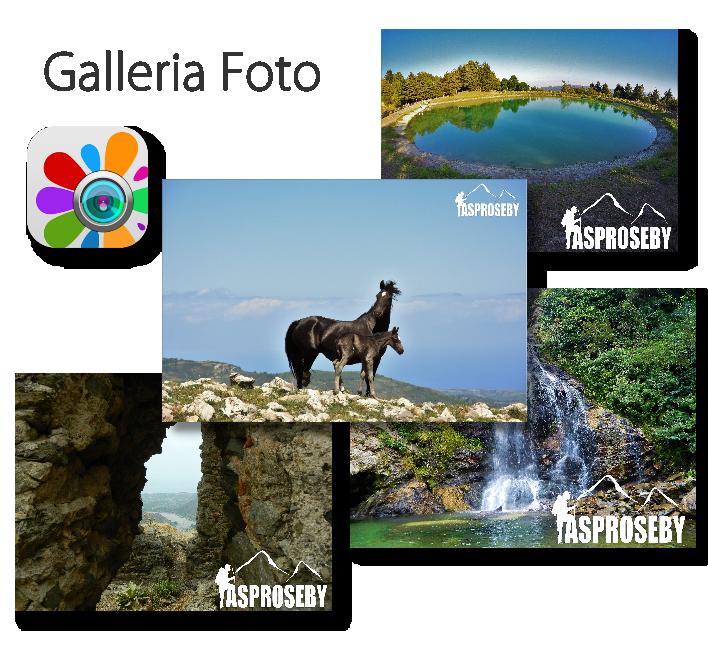 FotoGalleryok